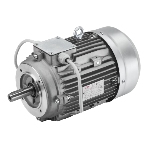 two pole three phase electric motors motori elettrici elvem