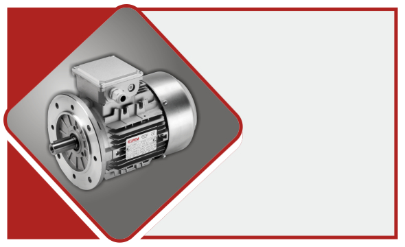 Costruttori motori elettrici Elvem - Home Box - 1.2