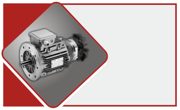 Costruttori motori elettrici Elvem - Home Box - 3.2