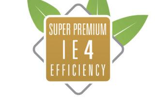 IE4 icona - Motori a Magneti Permanenti Elvem